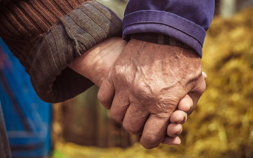 Lovers. Older people hold each other's hands. Warm relations. Peasants. The concept of love in the old age between grandfather and grandmother. | North Houston Hearing